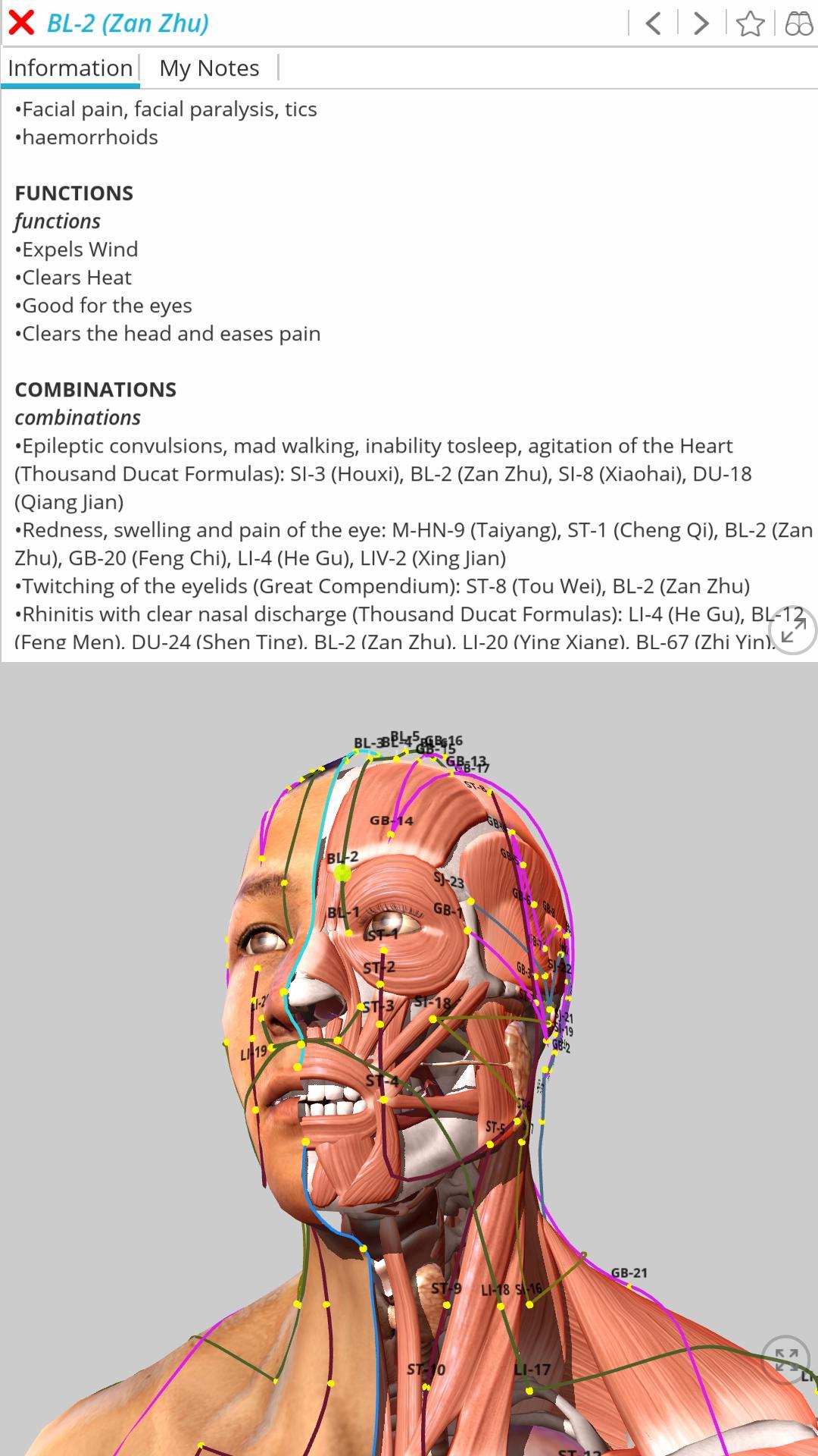 acupunctura vizuala 400 la sută viziune