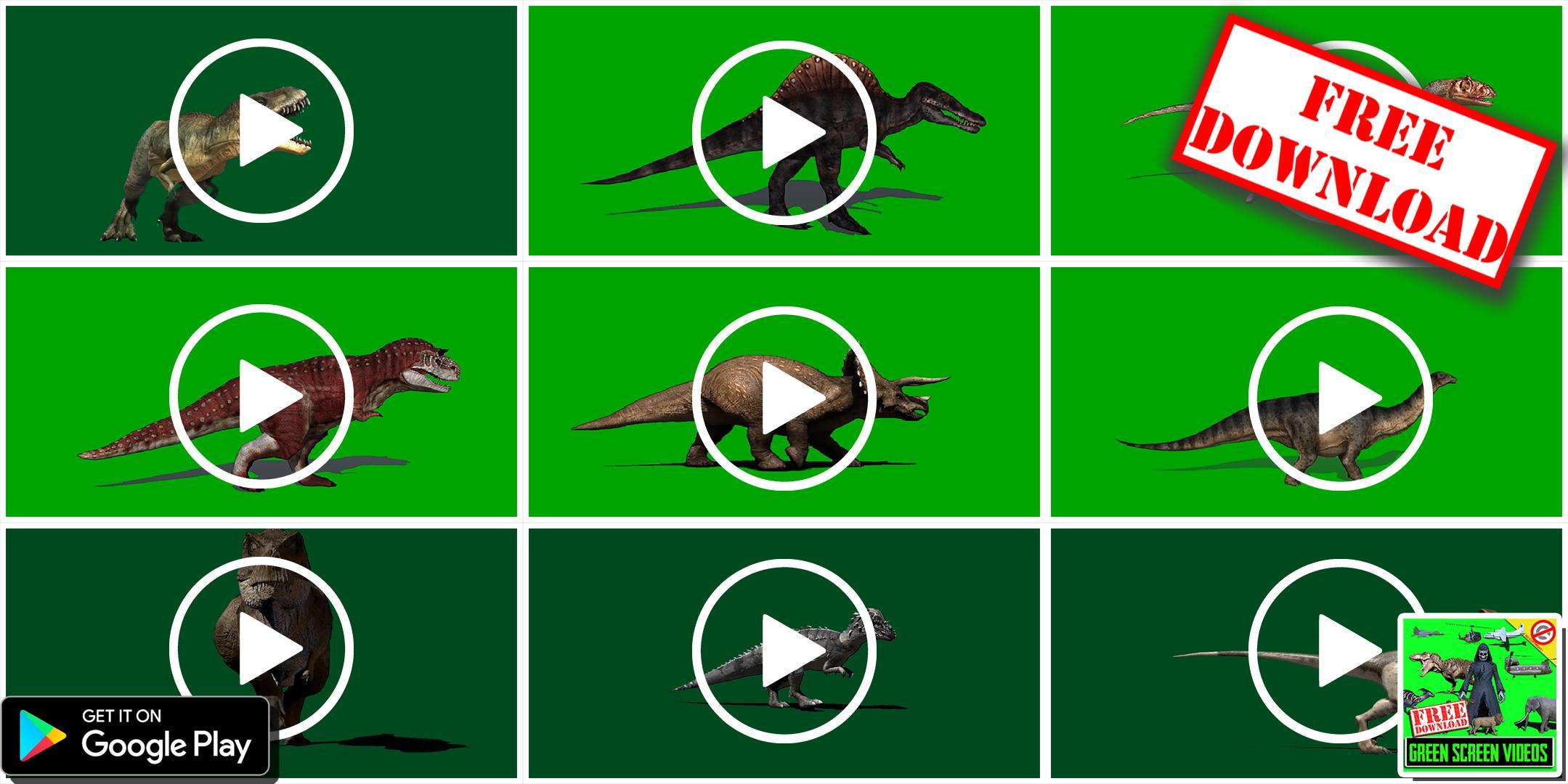 Kostenloser download von forex videos