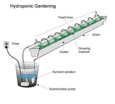 hydroponic systems screenshot 11