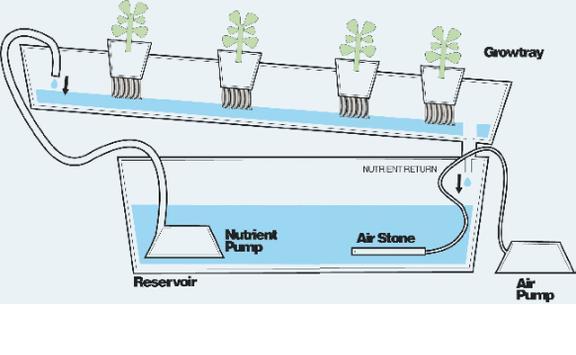 hydroponic systems screenshot 4