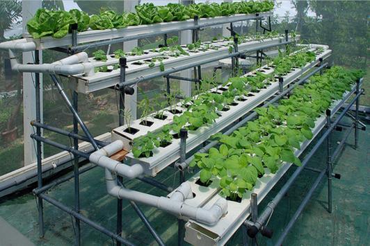 hydroponic systems screenshot 8