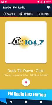 🇸🇪 FM Radio - Sweden 📻 screenshot 3