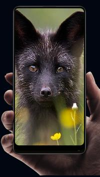 Fox Wallpaper For Android Apk Download