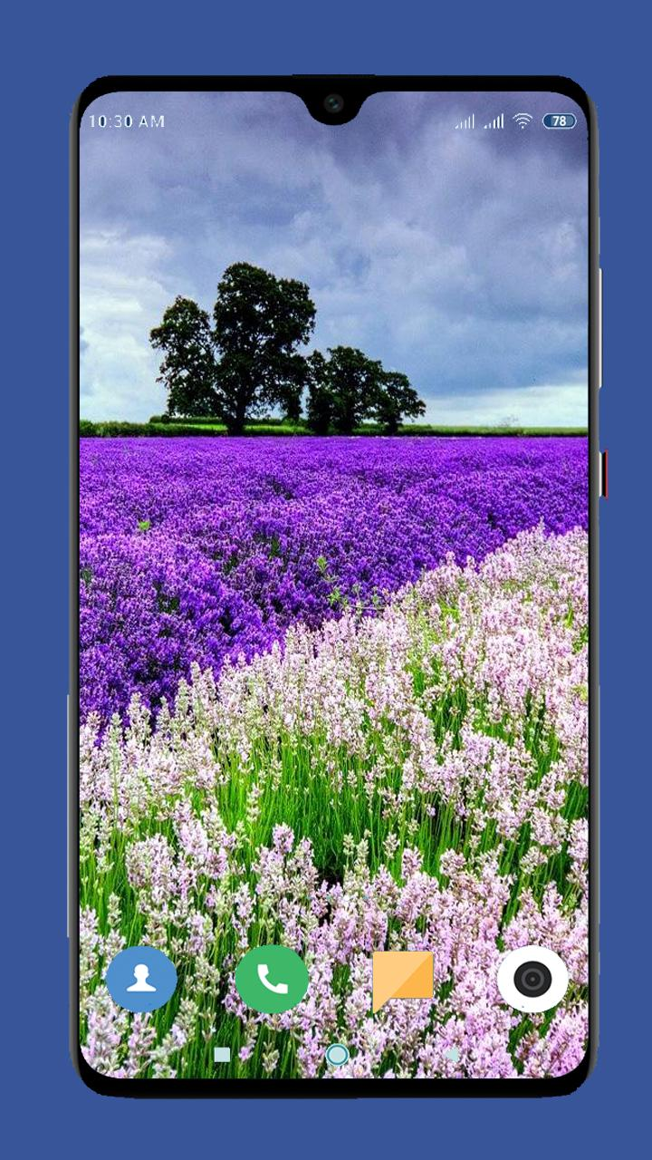 Beautiful Spring Wallpaper 4k For Android Apk Download