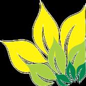 Heena Creations icon