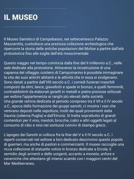 Museo Sannitico - BE screenshot 7