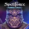 SpellForce: 히어로즈 앤 매직 아이콘