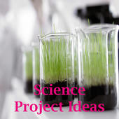 Science project ideas icon