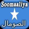 Historia de Somalia icono
