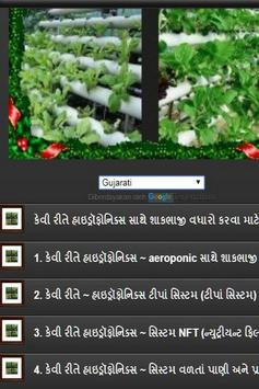 how to grow vegetables by hydroponics screenshot 5