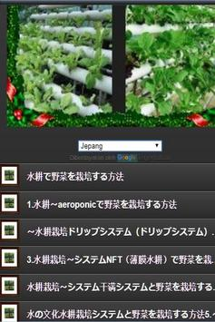 how to grow vegetables by hydroponics screenshot 23