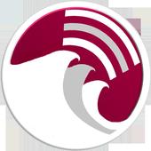 WaveRider icon