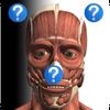 Anatomy Quiz Free أيقونة