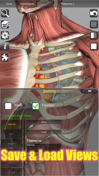3D Bones and Organs (Anatomy) 截图 3