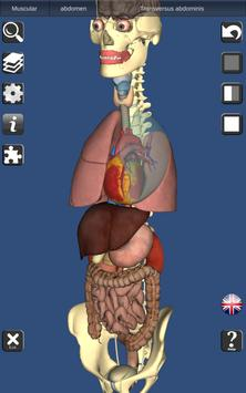 3D Bones and Organs (Anatomy) screenshot 12