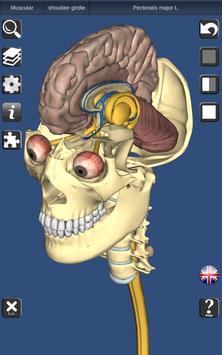 3D Bones and Organs (Anatomy) screenshot 13