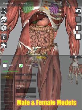 3D Bones and Organs (Anatomy) 截图 13