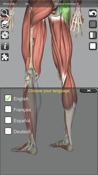 3D Bones and Organs (Anatomy) 截图 15