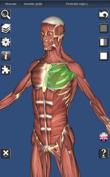 3D Bones and Organs (Anatomy) screenshot 16