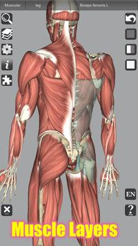 3D Bones and Organs (Anatomy) 截图 2