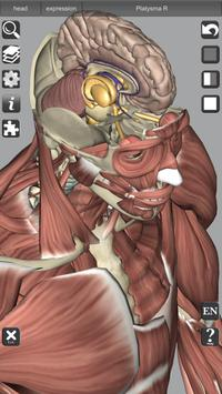 3D Bones and Organs (Anatomy) 截图 4