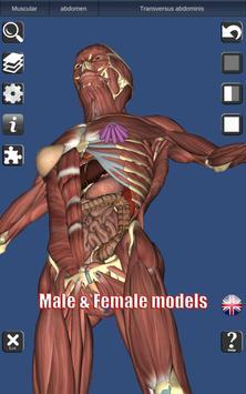 3D Bones and Organs (Anatomy) screenshot 9