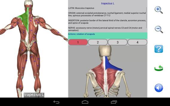 11 Schermata Visual Anatomy Free
