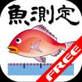 Fish measurement