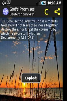 God's Promises 截图 4