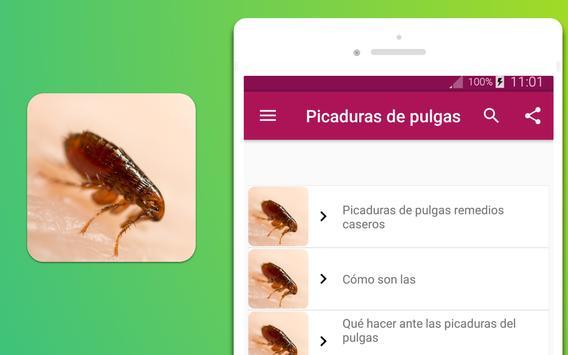 Picaduras de pulgas screenshot 3