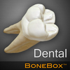 BoneBox™ - Dental Lite 圖標