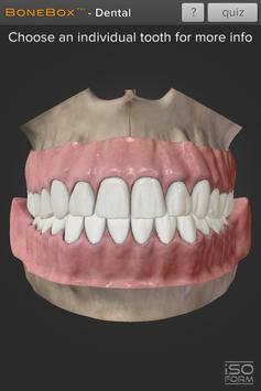 BoneBox™ - Dental Lite poster