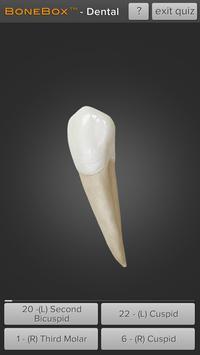 BoneBox™ - Dental Lite screenshot 1