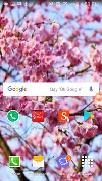Cherry Blossom Wallpaper HD screenshot 4