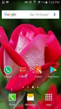 Red Rose Wallpaper HD screenshot 3
