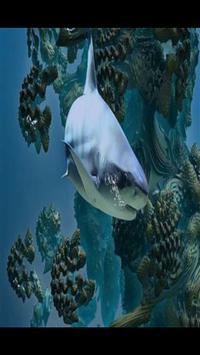 Shark Wallpaper HD poster