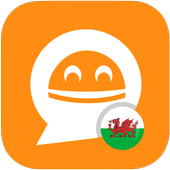 FREE Welsh Verbs - LearnBots icon