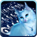 Elegant Kitty Night Keyboard Theme