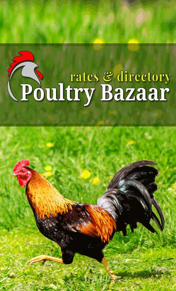 Poultry Bazaar for Android - APK Download
