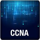 APK CCNA Exam Practice Questions