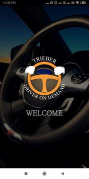 Trieber Driver On Demand screenshot 1