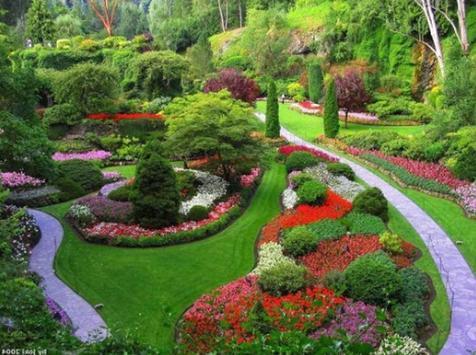 Flower Garden Inspiration screenshot 8