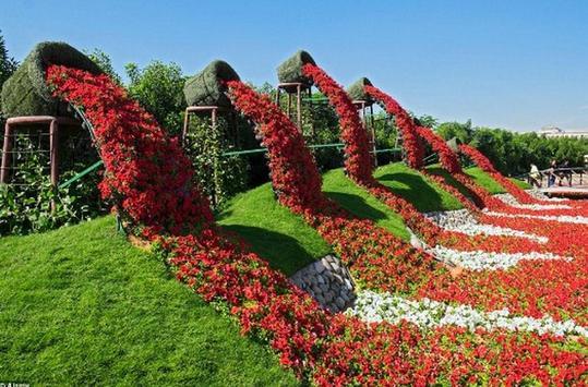 Flower Garden Inspiration screenshot 12