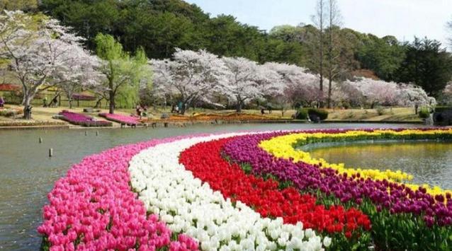 Flower Garden Inspiration screenshot 17
