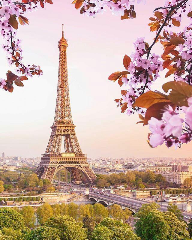 صور برج ايفل باريس 2019 For Android Apk Download