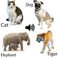 Animal sounds for children