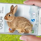 Bunny in Phone Cute joke icon