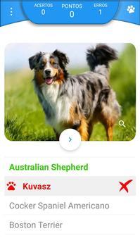 Quiz - Raças de cachorros screenshot 2
