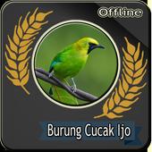 Suara Burung Cucak ijo Betina Offline icon