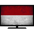 TV indonesia APK Android